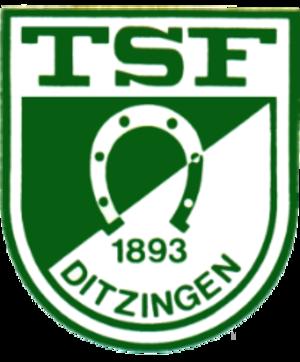 TSF Ditzingen - Image: Tsf ditzingen