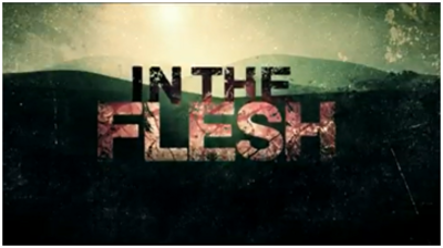 Picture of a TV show: In The Flesh