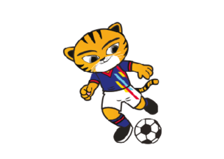 Football at the 2017 Southeast Asian Games