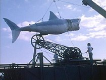 The full model mechanical shark, attached to special rigging