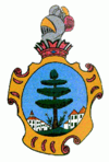 Coat of arms of Peveragno