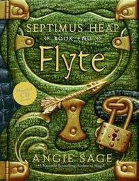 Flyte by angie sage.jpg