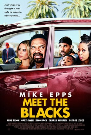 Meet the Blacks - Theatrical release poster