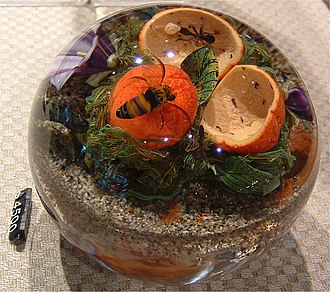 Studio glass - Paperweight with items inside the glass, Corning Museum of Glass