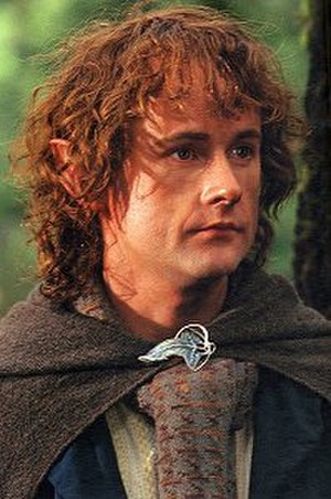 Peregrin Took - Billy Boyd as Pippin in Peter Jackson's The Lord of the Rings: The Fellowship of the Ring