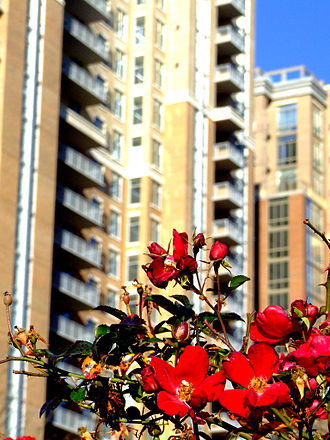 Reston, Virginia - The Midtown Reston Condominiums, a residential building at the Reston Town Center