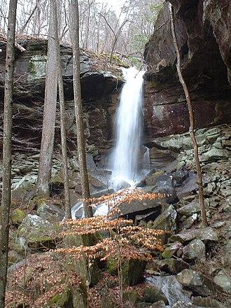 Sipsey Wilderness - West Bee Falls