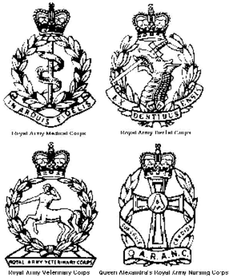 Army Medical Services - Cap Badges of the four medical/nursing corps