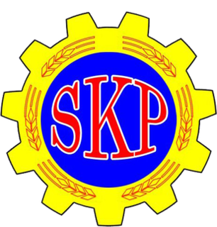 Communist Party of Sweden (1995) Political party in Sweden