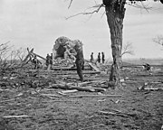 """Ruins of Judith Henry's house, """"Spring Hill"""", after the battle."""