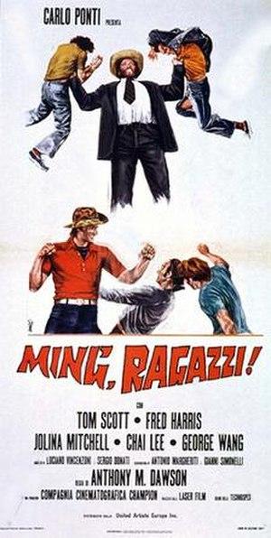 Mr. Hercules Against Karate - Image: Mr hercules vs karate poster