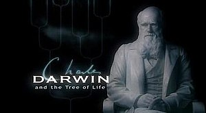 Charles Darwin and the Tree of Life - Programme title card from UK broadcast