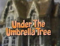 Trees That Look Like Umbrellas | eHow.com