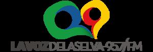 XHSDM-FM - Image: XHSDM La Voz Delaselva 95.7 logo