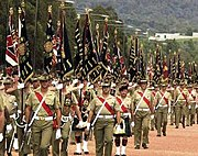 All colours of the Army were on parade for the centenary of the Army, 10 March 2001
