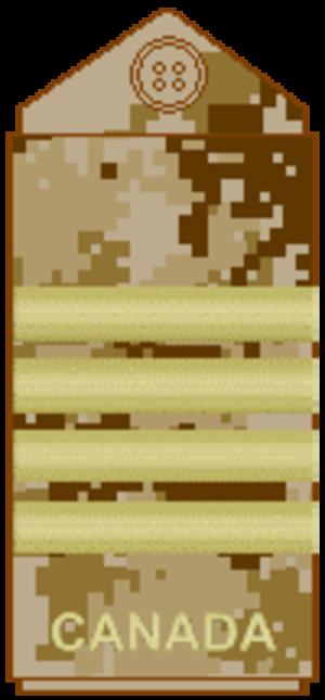 Colonel (Canada) - Image: CADPAT arid Col