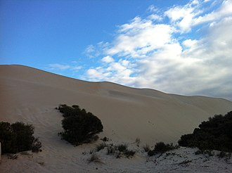Lincoln National Park - Sand Dunes