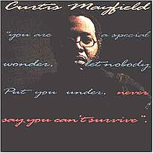 Never Say You Can't Survive by Curtis Mayfield album cover art.jpg