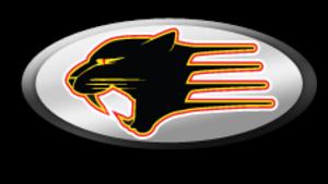 Panther Racing - Image: Panther Racing
