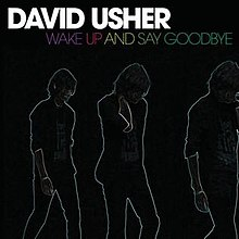 Wake Up and Say Goodbye - cover.jpg
