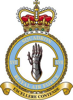 No. 17 Squadron RAF Flying squadron of the Royal Air Force