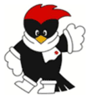 2003 Asian Winter Games - Official mascot