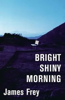 BrightShinyMorning-cover.jpg