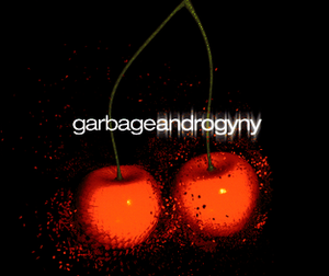 Androgyny (song) - Image: Garbageandrogyny 1