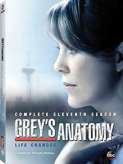 View Greys Anatomy - Season 11 (2014) TV Series poster on Ganool