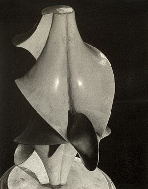 Enneper surface - Mathematics and art: Enneper surface as Dadaist art: Man Ray's 1934 Objet mathematique