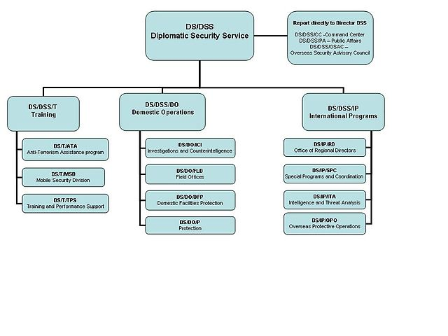 Template For Organizational Chart: DSS Org Chart.jpg - Wikipedia,Chart