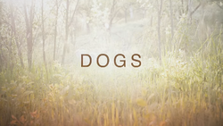 Dogs (TV series) Title Card.png