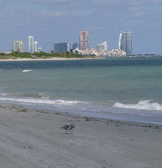 Crandon Park - Image: Miami 3194
