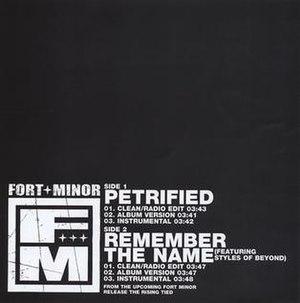 Remember the Name - Image: Petrified Remember The Name US Promo CD