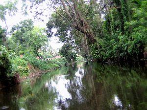 "Karthikappally - Karthikappally ""Thodu"" or Canal"