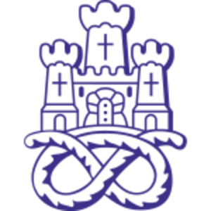 Newcastle Town F.C. - Image: Newcastle Town FC logo