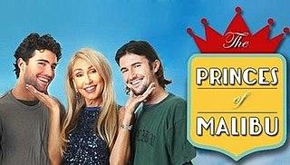 <i>The Princes of Malibu</i> US television program