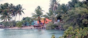 Majuro - Lagoon side with native dwellings