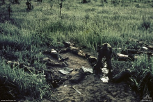 A soldier searches a number of dead bodies which lay strewn amidst the grass.
