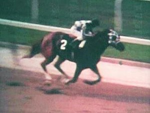 1973 Belmont Stakes - Secretariat in the stretch run