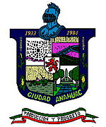 Coat of arms of Anáhuac Municipality
