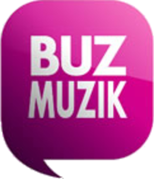 BuzMuzik - Image: Buz Muzik logo