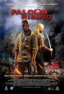 Falcon Rising (2014) free full download