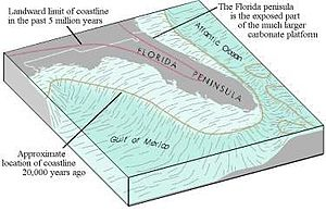 Geology of Florida - The structure of the Florida platform, the foundation of which came from the African plate over 200 million years ago.