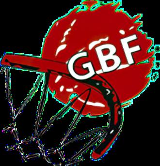 Georgia national basketball team - Image: Georgian Basketball Federation logo