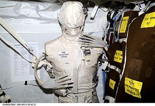 Spaceflight radiation carcinogenesis