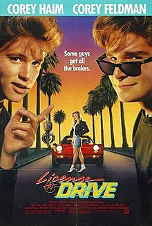 License to drive poster.jpg