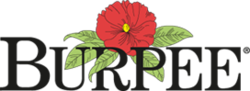 "Logo of Burpee Seeds, a flower, surrounded by leaves, above the word ""Burpee"""
