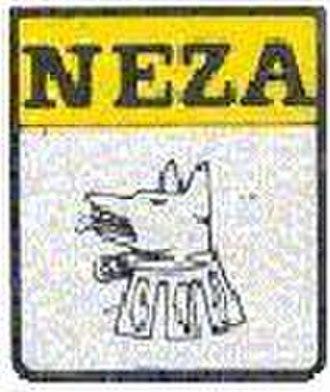 Deportivo Neza - Image: COYONEZA