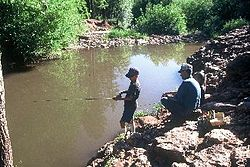 Christopher Creek - Wikipedia